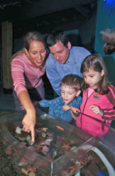 Aquarium at the Fisheries Museum of the Atlantic