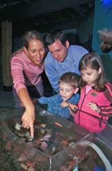 Aquarium at the Fisheries Museum of the Atlantic